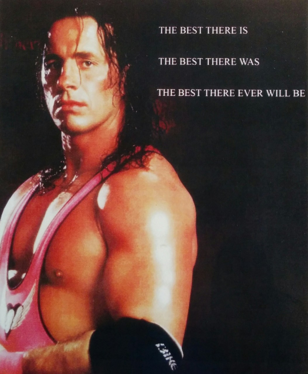 the best there was Bret Hart The best there is and the best there ever will be